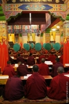 Palpung Sherabling Monastic Institution